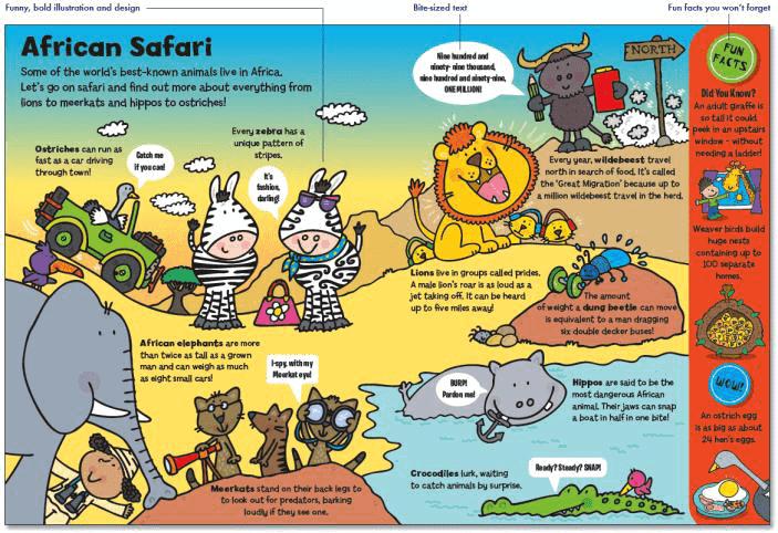 Animals Everywhere - African Safari